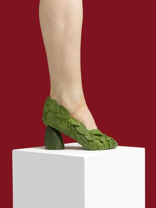 salatalık ayakkabı