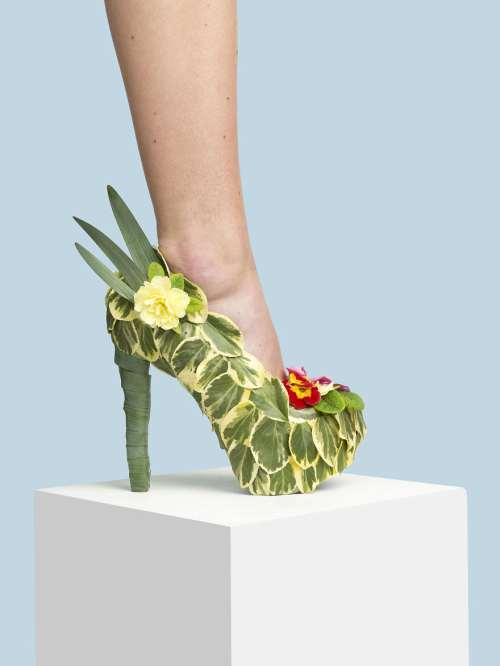 vegan ayakkabı