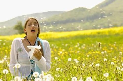 bahar nezlesi nasıl geçer
