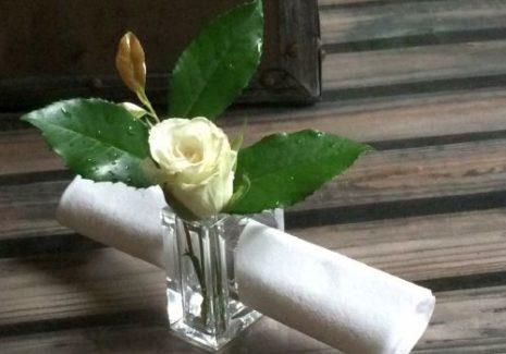 Eleştirinin Buz Kenarına Çiçek Kondurmak